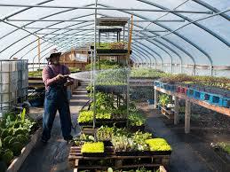 Kansas City Botanical Gardens by This Kansas City Program Helps Refugees Build A Future Through
