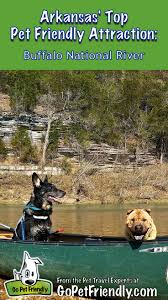 Arkansas traveling with pets images 339 best outdoor fun with dogs images dogs outdoor jpg