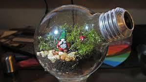 2nd Light 2nd Light Bulb Terrarium By Cyborspasm On Deviantart
