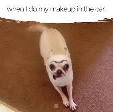 Chihuahua Meme - farrah moan on twitter chihuahua meme of the day