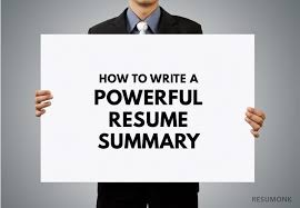 Best Resume Summaries by How To Write A Powerful Resume Summary 10 Best Examples