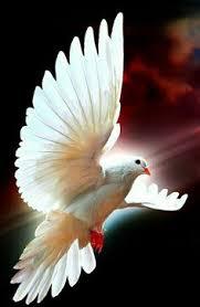 imagenes catolicas para compartir oración al espíritu santo para estar bendecido toda la semana sv