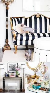 Black And White Striped Chair by 31 Best Kanjana Family Room Images On Pinterest Family Room