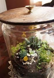 21 of the cutest terrariums we u0027ve ever seen hometalk