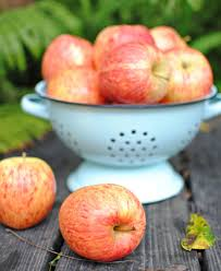 Town And Country Living by Farmhouse Friday Baked Apple Chips Town U0026 Country Living