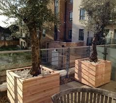wooden garden planter larch square planter