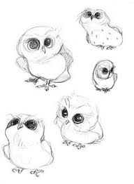 little owl drawing google search doodles pinterest owl