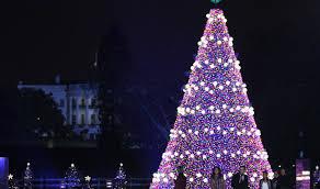 how to code white house christmas tree lights into any shiny shape