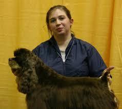 always pawsabilities 16 photos u0026 26 reviews pet groomers