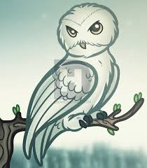 how to draw hedwig harry potter step by step by darkonator
