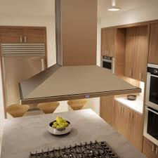 ceiling wonderful stainless steel broan vent hood with recessed