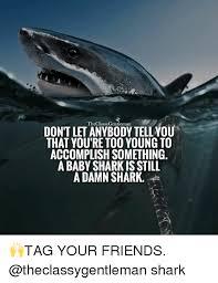 Shark Meme - 25 best memes about baby sharks baby sharks memes