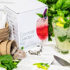 plant theatre cocktail garden kit 6 varieties to grow amazon co