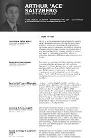 Real Estate Agent Resume Example by Sales Agent Resume Samples Visualcv Resume Samples Database