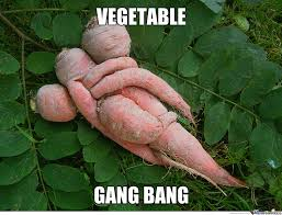 Vegetable Meme - vegetable sexual practice by sun meme center