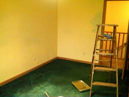 what color wall paint goes with green carpet carpet vidalondon