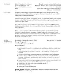 Sample Resume For Digital Marketing Manager by Digital Marketing Resume 7 Free Word Pdf Documents Downlaod