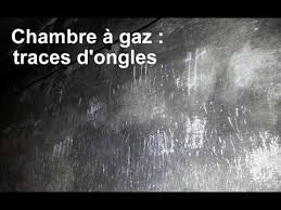 gaz chambre à gaz a auschwitz ouvrez les yeux et n écoutez pas les guides 2