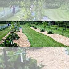 Heritage Lawn And Landscape by Organic Gardening Mother Earth News