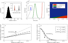 the effects of a deleterious mutation load on patterns of