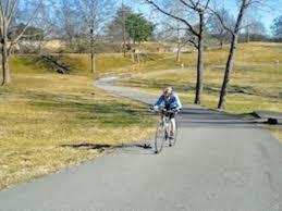 share the damn road cycling jersey bicycling pinterest road cycling u0026 road biking in nashville