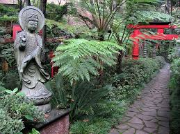 17 best japanese style gardening images on japanese