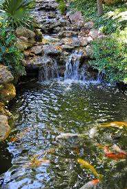 261 best koi pond images on pinterest ponds water features and