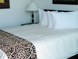 1 Bedroom Apartments Tampa Fl The Element Corporate Furnished And Extended Stay Apartments From