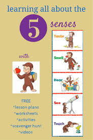 resources to teach kids about the 5 senses sensory issues