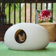 designer cat beds for most capricious felines