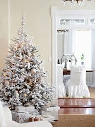 white ornament tree rainforest islands ferry