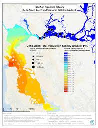 san francisco delta map fish and salinity in the san francisco estuary san francisco bay