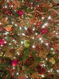 nature ornaments for christmas tree christmas lights decoration