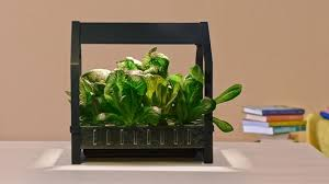 ikea brings hydroponics to the mainstream with indoor gardening