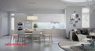 salon cuisine ouverte amenagement salon cuisine ouverte 30m2 pour idees de deco nouveau id