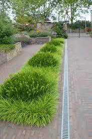 223 best hellstrip gardening images on pinterest landscaping