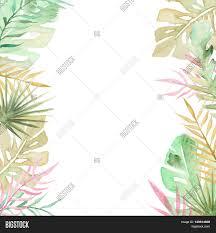 watercolor palm tree leaves image u0026 photo bigstock