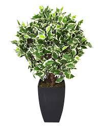 geko products artificial variegated ficus plant and pot