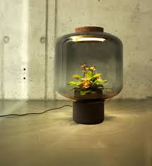 no need for windows or water these lamps grow plants on their own