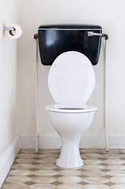the ultimate toilet buying guide