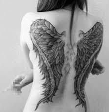 wings back venice designs