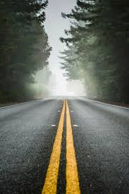 217 best road less traveled images on pinterest open roads