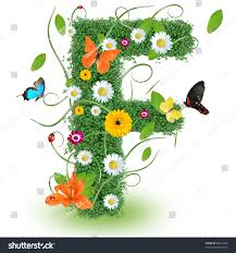 beautiful spring letter f stock photo 96615352 shutterstock