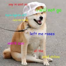 Meme Shiba Inu - funny shiba inu meme picture quotesbae