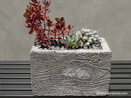 Succulent Planters For Sale by Fresh Cement Planters For Sale 20840