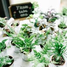 plant wedding favors wedding favors