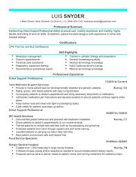 Sample Professional Resume by Professional Resume Writing Services In Nj