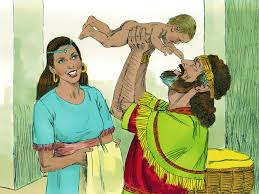 some time later david and bathsheba had another baby boy whom they