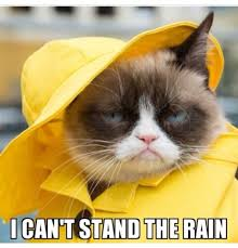 Rainy Day Meme - sabai thai spa on twitter if you are like grumpy cat and can t