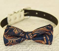 wedding accessories store gold dog bow tie collar navy la dog store